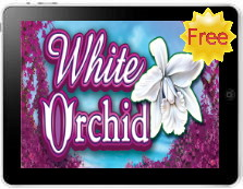 white orchid mobile pokies